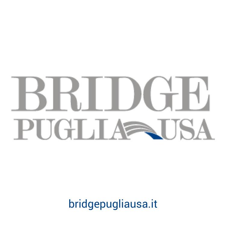 bridge puglia usa portfolio scirocco multimedia